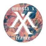 logo-monstax-france